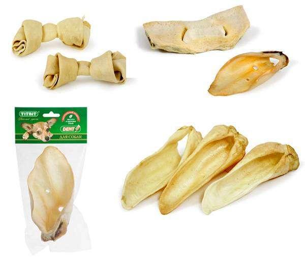 лечение от паразитов семенами тыквы