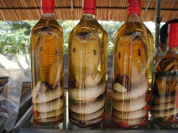 Китаянку укусила «алкогольная» змея из бутылки