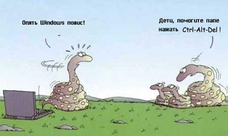 фото змей смешные