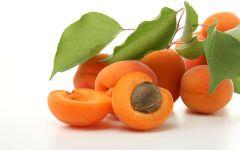 Абрикосы фото, фото, фото абрикос, фрукты, абрикос
