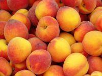 Персики плоды