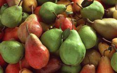 Зеленые и красные груши фото