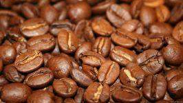 Обжаренные кофейные зерна фото