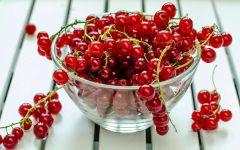 Красная смородина в тарелке, фото обои фотография