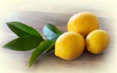 Лимон в домашних условиях обои