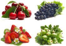 Клубника, виноград, черешня, крыжовник