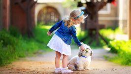 Девочка и ши-тцу
