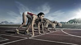 Легкоатлетка на старте с гепардами, прикольное фото смешная