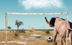 Слон и лев играют в футбол, прикольное фото смешная