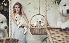 Девушка модель со щенками золотистого ретривера